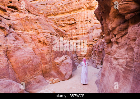 Bedouin man in the Colored Canyon, near Nuweiba, Sinai, Egypt, North Africa, Africa - Stock Photo