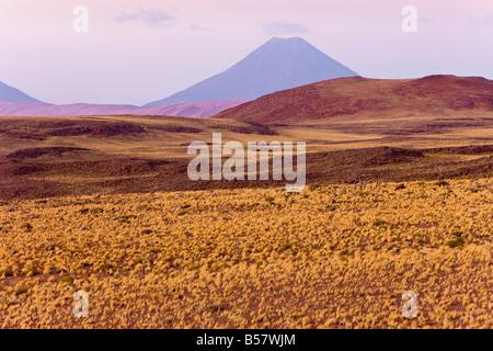 The altiplano, Los Flamencos National Reserve, Atacama Desert, Antofagasta Region, Norte Grande, Chile - Stock Photo