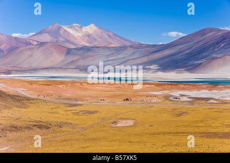The altiplano, Los Flamencos National Reserve, Atacama Desert, Antofagasta Region, Norte Grande, Chile, South America - Stock Photo