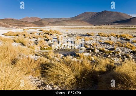 Altiplano, Los Flamencos National Reserve, Atacama Desert, Antofagasta Region, Chile - Stock Photo