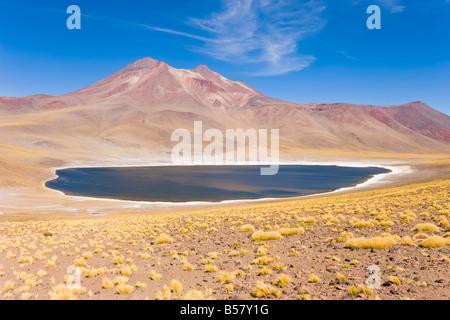 Laguna Miscanti, Los Flamencos National Reserve, Atacama Desert, Antofagasta Region, Chile - Stock Photo