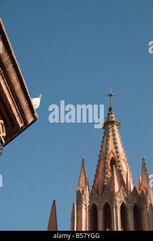 White dove on roof of bandstand in the Jardin Principal with La Parroquia, San Miguel de Allende, Guanajuato state, - Stock Photo