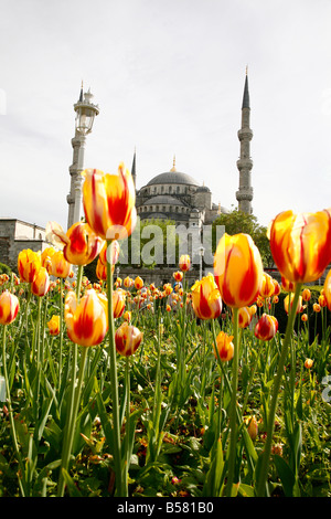 The Blue Mosque (Sultan Ahmet Camii), Istanbul, Turkey, Europe - Stock Photo