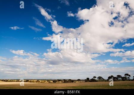 Countryside, Corrigin, Western Australia, Australia, Pacific - Stock Photo