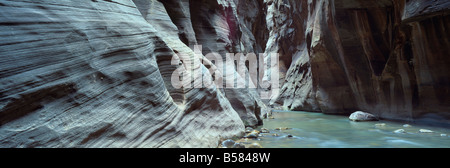 Virgin River flowing through the Virgin Narrows, Zion National Park, Utah, United States of America, North America - Stock Photo