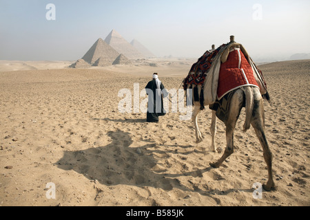 A Bedouin guide and camel approaching the Pyramids of Giza, UNESCO World Heritage Site, Cairo, Egypt,North Africa, - Stock Photo