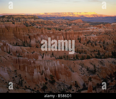View of Bryce Canyon National Park in evening light, from Sunset Point, Utah, United States of America, North America - Stock Photo