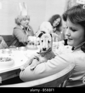 Dog Owners and their pets seen here having a Christmas party. December 1976 76-07481-008 - Stock Photo