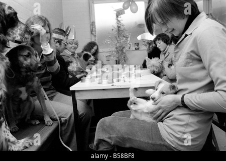 Dog Owners and their pets seen here having a Christmas party. December 1976 76-07481-011 - Stock Photo