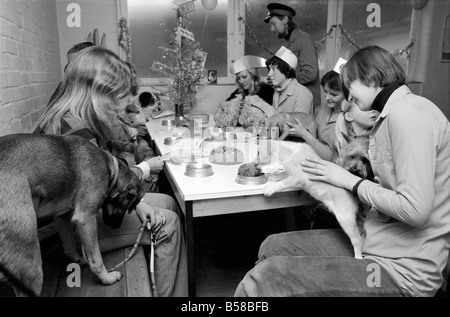 Dog Owners and their pets seen here having a Christmas party. December 1976 76-07481-012 - Stock Photo