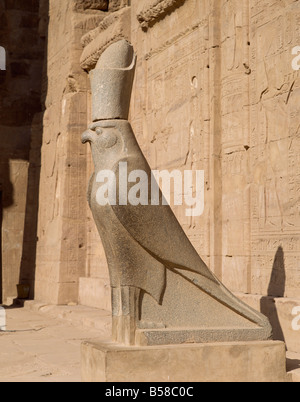 The Statue of Horus the falcon god at the Temple of Horus Edfu Egypt North Africa Africa Stock Photo