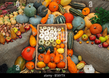 a harvest display at heligan gardens,cornwall,uk - Stock Photo