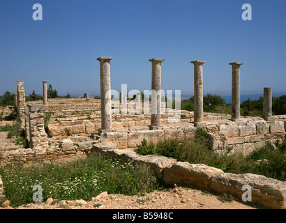 Ruins of the temple of Apollo-Hylates (God of Woodland), Cyprus, Europe - Stock Photo