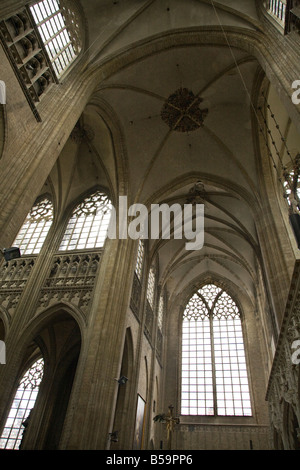 Vaulted roof and window in the Collegiate Saint Peter's Church, Grote Markt (Market Square), Leuven, Belgium. (42)