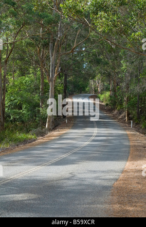 A paved road is shaded with dappled light from surrounding trees along Scotsdale Road Tourist Drive, Denmark, Western - Stock Photo