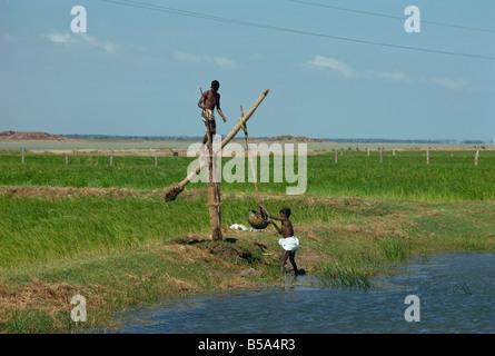 Water collection Mahabalipuram near Madras Tamil Nadu state India Asia - Stock Photo