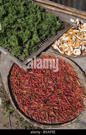 Peppers drying in sun, Luang Prabang, Laos, Indochina, Southeast Asia - Stock Photo