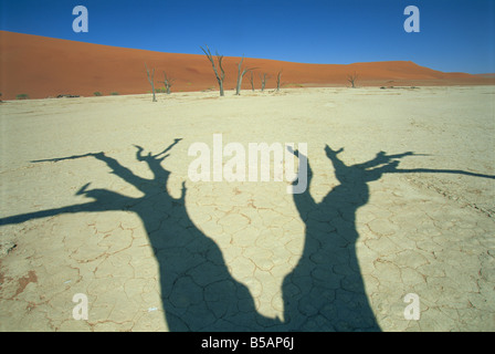 Shadows of dead trees Dead Vlei Namib Naukluft Park Namibia Africa - Stock Photo