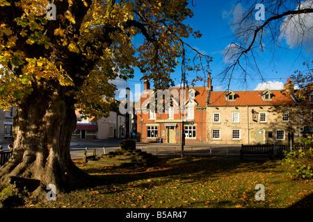 Chestnut Avenue Thornton le Dale North Yorkshire - Stock Photo
