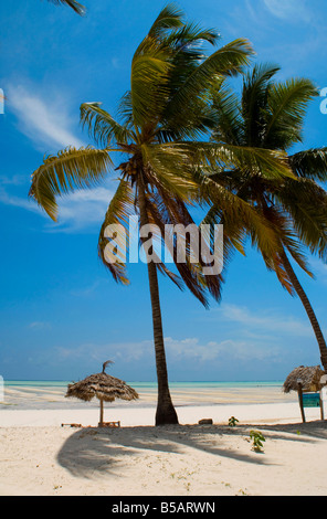 Palm trees, thatched beach umbrellas and traditional sunbeds made from coconut wood on the beach at Paje, Zanzibar, - Stock Photo