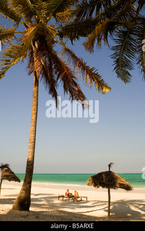 Thatched beach umbrellas and traditional sunbeds made from coconut wood on the beach at Paje, Zanzibar, Tanzania, - Stock Photo