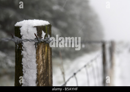 wooden fence post coated in snow and ice with barbed and net wire fence on the edge of a forest county antrim northern - Stock Photo