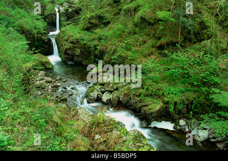 Watersmeet Exmoor National Park Devon England United Kingdom Europe - Stock Photo
