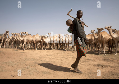 Nomadic camel herders lead their herd to a watering hole in rural Somaliland, northern Somalia, Africa - Stock Photo