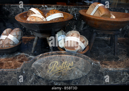 Bettys tea rooms shop window display in Harrogate Yorkshire UK - Stock Photo