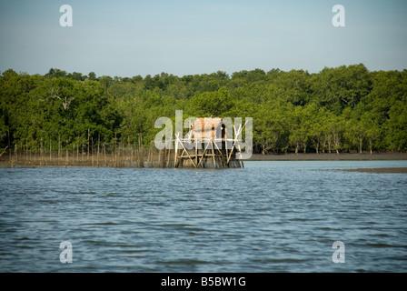 Traditional Sea Fishing traps - Stock Photo