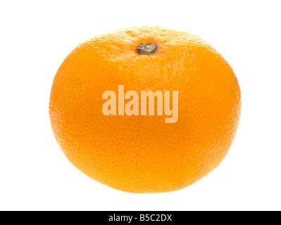 Buddhist singles in tangerine