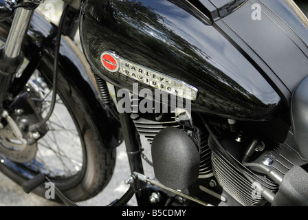 Harley Davidson Custom Motorcycle chrome Engine detail - Stock Photo