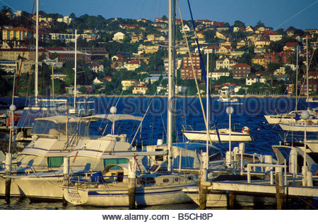 sailing boats and yachts in the marina of Rose Bay in Sydney with a seaplane - Stock Photo
