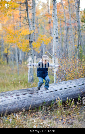 little boy jumping off log, fall colors - Stock Photo