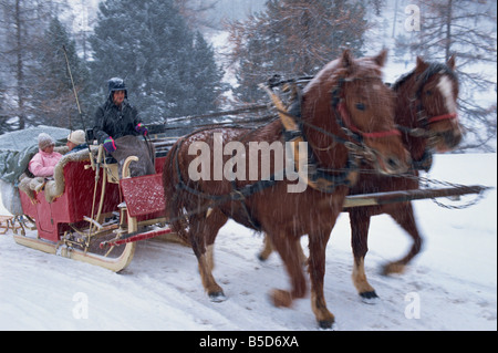 Horse drawn sleigh making for Pontressina in a snow storm, in Switzerland, Europe - Stock Photo