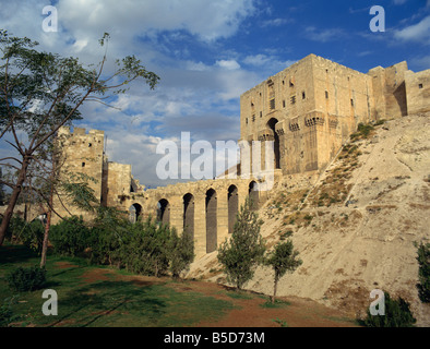 The Citadel, Aleppo, UNESCO World Heritage Site, Syria, Middle East - Stock Photo