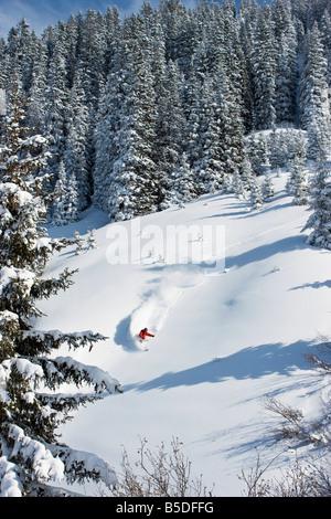Austria, Tyrol, Kitzbühel, Pass Thurn, Freeride, Man skiing downhill - Stock Photo