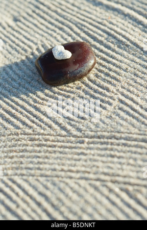 Coral on top of stone on raked sand - Stock Photo