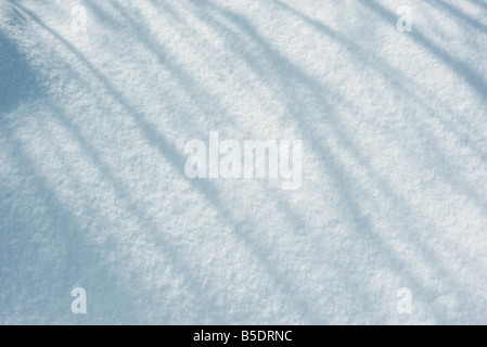 Shadows on snow - Stock Photo