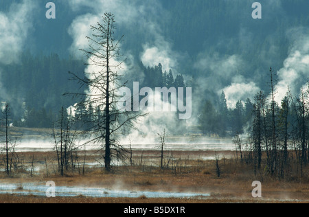 Geothermal activity, Yellowstone National Park, UNESCO World Heritage Site, Wyoming, USA, North America - Stock Photo