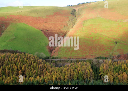 Heart of Wales Railway Line runnibng through the Cambrian Mountains in autumn Wales - Stock Photo