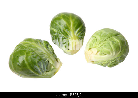 Brussel sprouts cutout on white background - Stock Photo