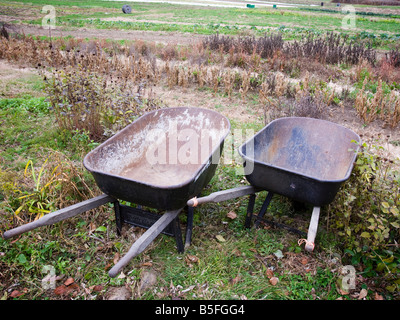 Wheelbarrows on the edge of a farm - Stock Photo