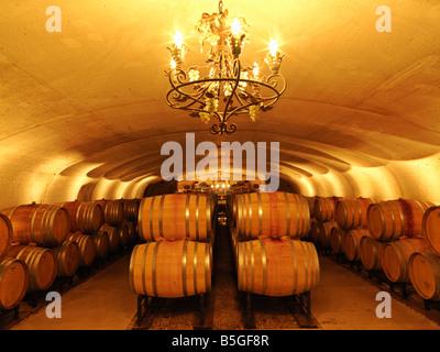 Canada,Ontario,Vineland,wine barrel cellar Vineland Estates Winery Niagara Region - Stock Photo