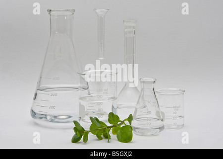 Clean and clear chemistry for cosmetic beauty products clear liquids in a variety of bottles and flasks on a white - Stock Photo