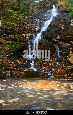 Fall color at Reedy Branch Falls in South Carolina - Stock Photo