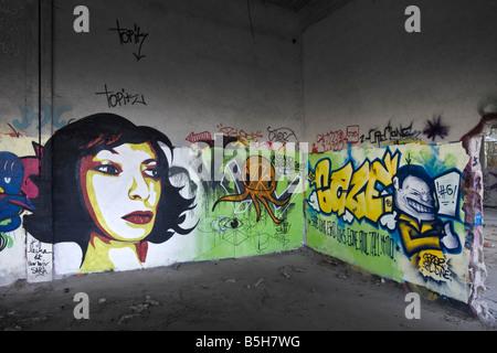 At Cusset, graffiti in a brownfield site factory (Allier - France). Graffiti dans une usine désaffectée de Cusset - Stock Photo