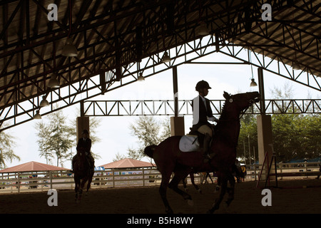 Warming up the horse before a show jumping performance. - Stock Photo