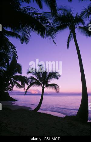 Palm trees and beach at dawn with Kahoolawe Island in distance Kihei Maui Hawaii - Stock Photo