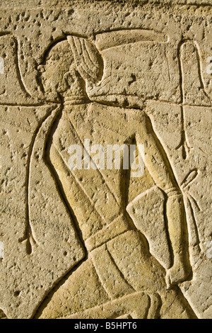 Bas Relief detail from the temple of Abu Simbel in Egypt - Stock Photo
